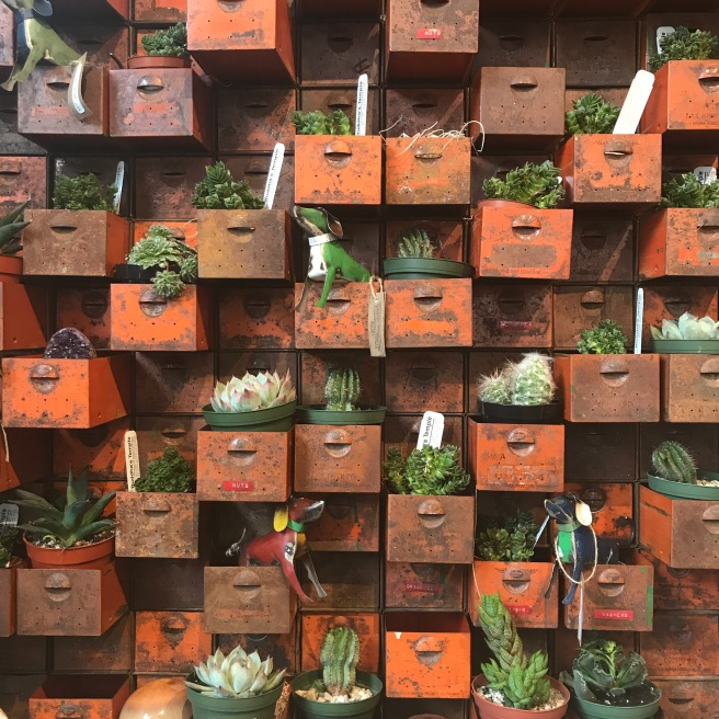 Plant Store Milwaukee