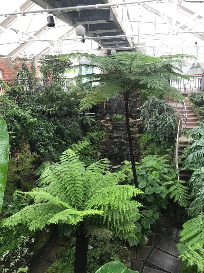 The Tropical Ravine Botanical Gardens Belfast
